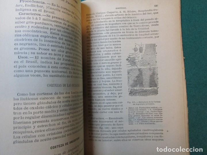 Libros antiguos: FARMACIA TRATADO MATERIA FARMACEUTICA VEGETAL - JUAN GOMEZ PAMO - EDI MOYA 1892 ILUSTRADO + INFO - Foto 3 - 177747268