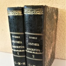 Libros antiguos: MEDICINA Y FARMACIA,II TOMOS,COMPENDIO DE ANATOMIA DESCRIPTIVA Y EL ARTE DE DISECAR,VALENCIA 1868. Lote 182259497