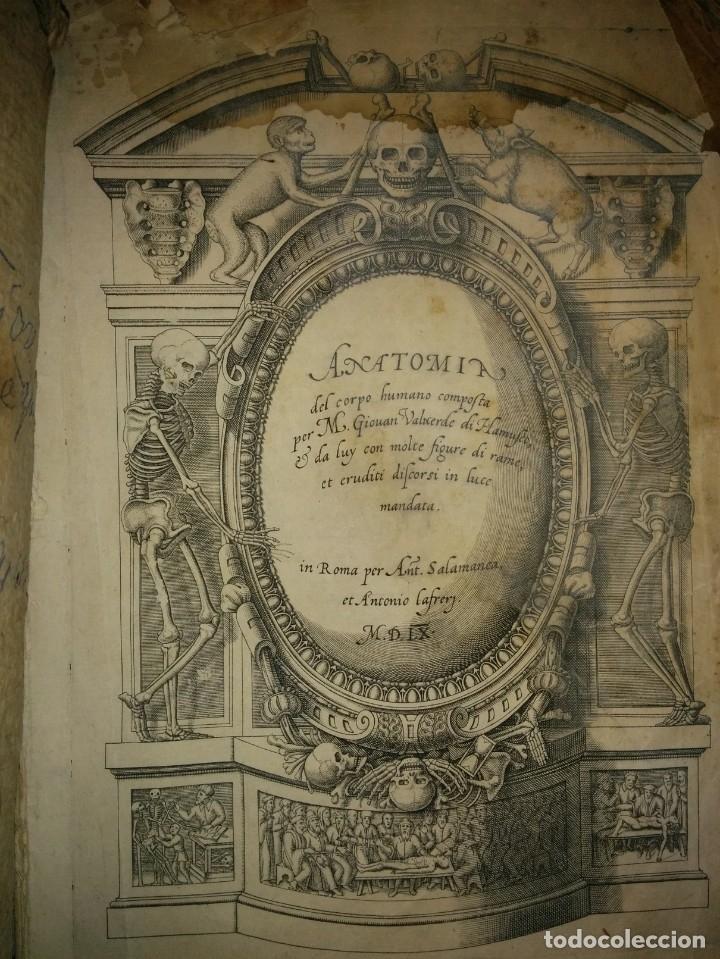 Libros antiguos: ANATOMÍA DEL CUERPO HUMANO, DE VALVERDE DE AMUSCO AÑO 1560.Siglo XVI - Foto 16 - 152441030