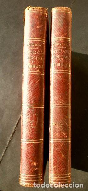 Libros antiguos: Antiguo TRATADO de VETERINARIA (AÑO 1887) PATOLOGIA ESPECIAL Y TERAPEUTICA - ISASMENDI - 2ª EDICION - Foto 3 - 190838750