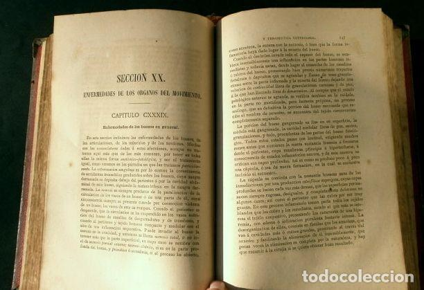 Libros antiguos: Antiguo TRATADO de VETERINARIA (AÑO 1887) PATOLOGIA ESPECIAL Y TERAPEUTICA - ISASMENDI - 2ª EDICION - Foto 7 - 190838750