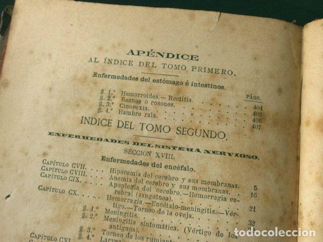 Libros antiguos: Antiguo TRATADO de VETERINARIA (AÑO 1887) PATOLOGIA ESPECIAL Y TERAPEUTICA - ISASMENDI - 2ª EDICION - Foto 8 - 190838750