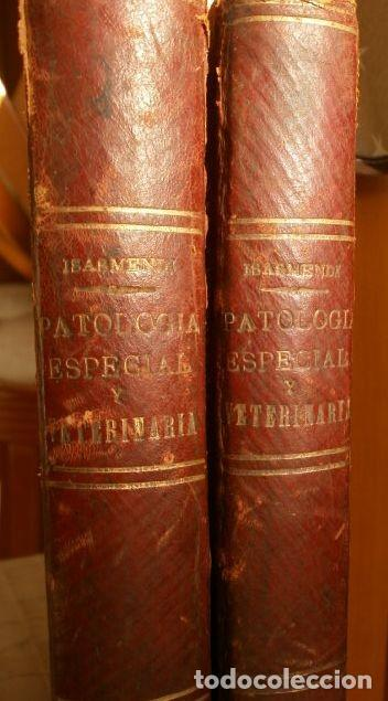 Libros antiguos: Antiguo TRATADO de VETERINARIA (AÑO 1887) PATOLOGIA ESPECIAL Y TERAPEUTICA - ISASMENDI - 2ª EDICION - Foto 14 - 190838750