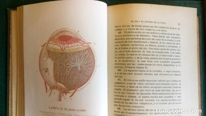 Libros antiguos: LS 32 - GUÍA PRÁCTICA DE LA SALUD - ROSSITER - TRATADO ILUSTRADO EN PERFECTO ESTADO - Foto 7 - 194352193