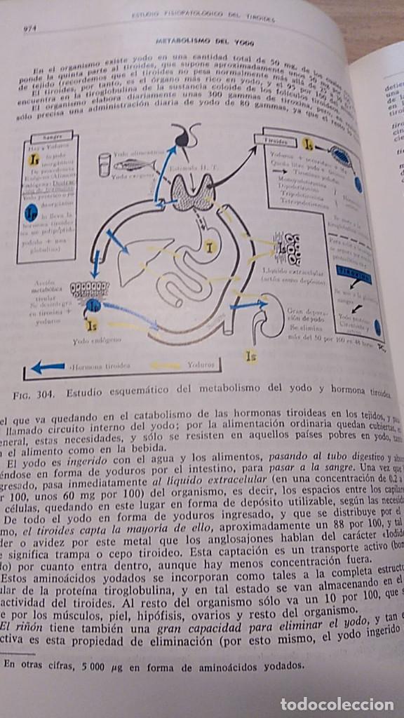 Libros antiguos: PATOLOGÍA GENERAL Y FISIOPATOLOGÍA. ENRIQUE ROMERO. 2 VOLÚMENES - Foto 5 - 194620888