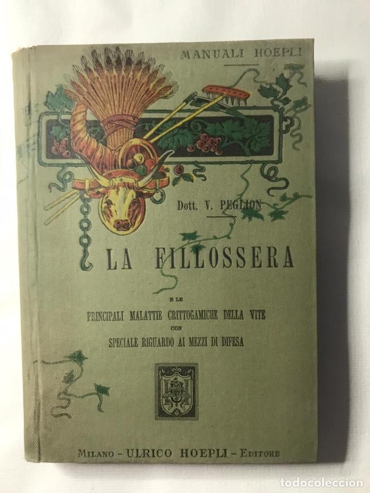 LA FILLOSSERA. DOTT. VITTORIO PEGLION. ULRICO HOEPLI. MILANO, 1902 (Libros Antiguos, Raros y Curiosos - Ciencias, Manuales y Oficios - Medicina, Farmacia y Salud)
