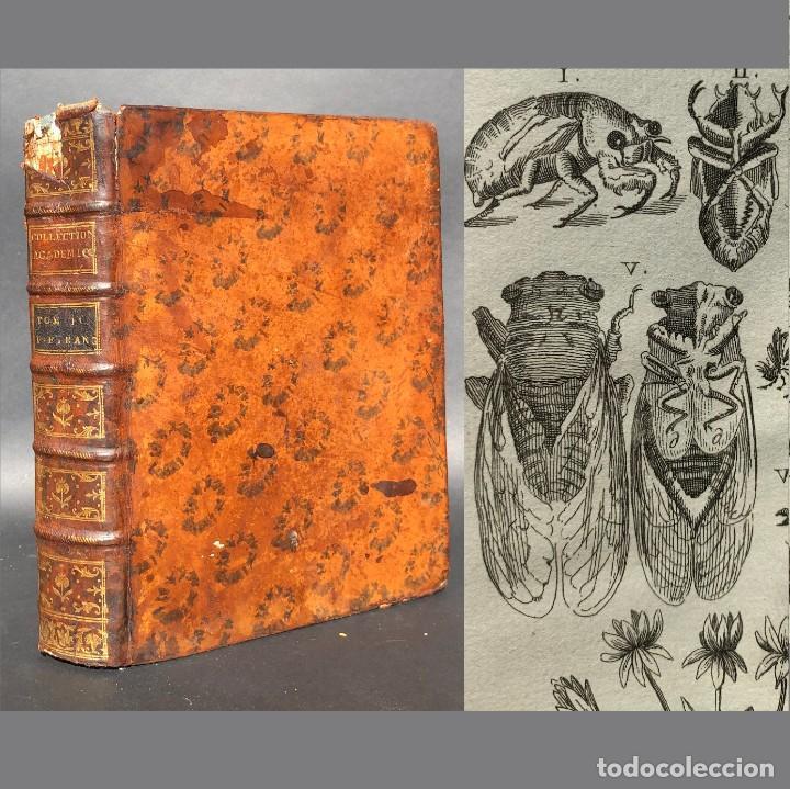 1757 - 35 GRABADOS - LAMINAS AL ACERO - HISTORIA NATURAL - MEDICINA - BIOLOGIA - BOTANICA - COLLECTI (Libros Antiguos, Raros y Curiosos - Ciencias, Manuales y Oficios - Medicina, Farmacia y Salud)