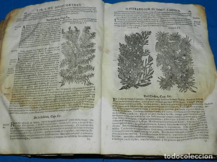 Libros antiguos: ANDRÉS DE LAGUNA - PEDACIO DIOSCORIDES ANAZARBEO ACERCA DE LA MATERIA MEDICINAL Y VENENOS MORTIFEROS - Foto 7 - 195486703
