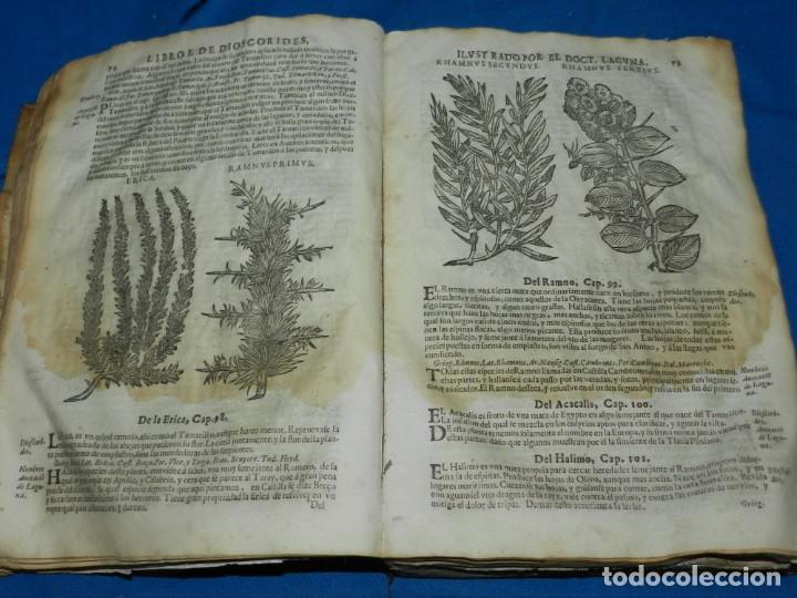 Libros antiguos: ANDRÉS DE LAGUNA - PEDACIO DIOSCORIDES ANAZARBEO ACERCA DE LA MATERIA MEDICINAL Y VENENOS MORTIFEROS - Foto 8 - 195486703