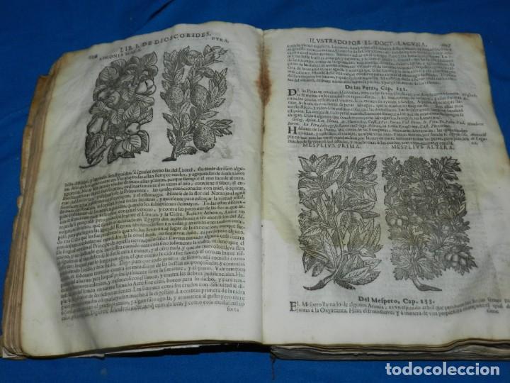 Libros antiguos: ANDRÉS DE LAGUNA - PEDACIO DIOSCORIDES ANAZARBEO ACERCA DE LA MATERIA MEDICINAL Y VENENOS MORTIFEROS - Foto 9 - 195486703