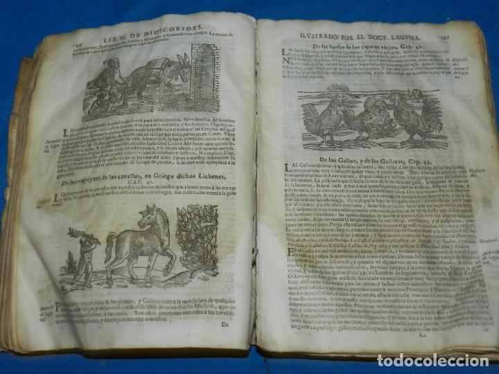 Libros antiguos: ANDRÉS DE LAGUNA - PEDACIO DIOSCORIDES ANAZARBEO ACERCA DE LA MATERIA MEDICINAL Y VENENOS MORTIFEROS - Foto 13 - 195486703