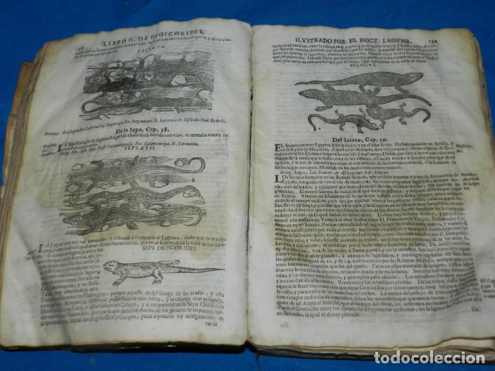 Libros antiguos: ANDRÉS DE LAGUNA - PEDACIO DIOSCORIDES ANAZARBEO ACERCA DE LA MATERIA MEDICINAL Y VENENOS MORTIFEROS - Foto 14 - 195486703