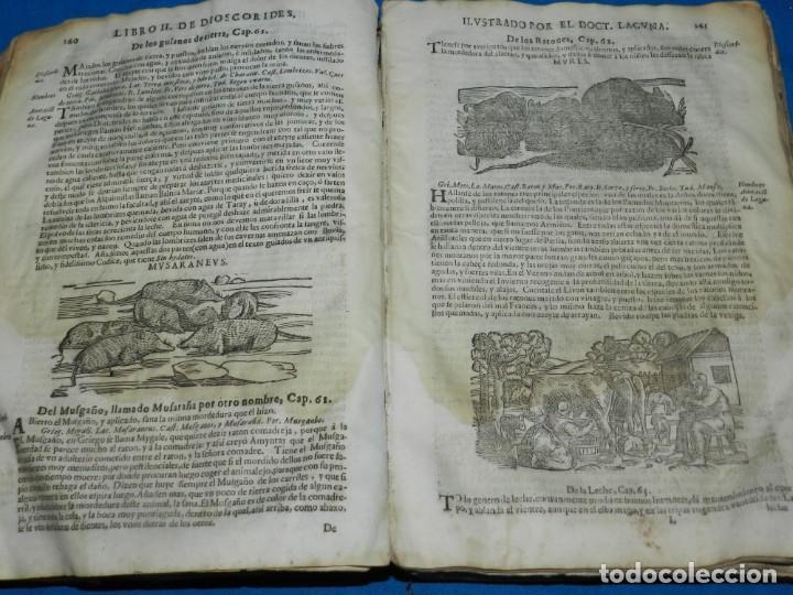 Libros antiguos: ANDRÉS DE LAGUNA - PEDACIO DIOSCORIDES ANAZARBEO ACERCA DE LA MATERIA MEDICINAL Y VENENOS MORTIFEROS - Foto 15 - 195486703