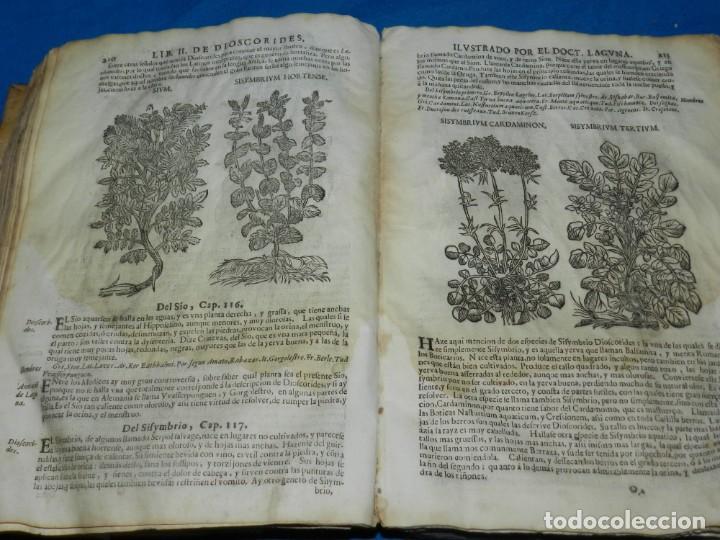 Libros antiguos: ANDRÉS DE LAGUNA - PEDACIO DIOSCORIDES ANAZARBEO ACERCA DE LA MATERIA MEDICINAL Y VENENOS MORTIFEROS - Foto 17 - 195486703