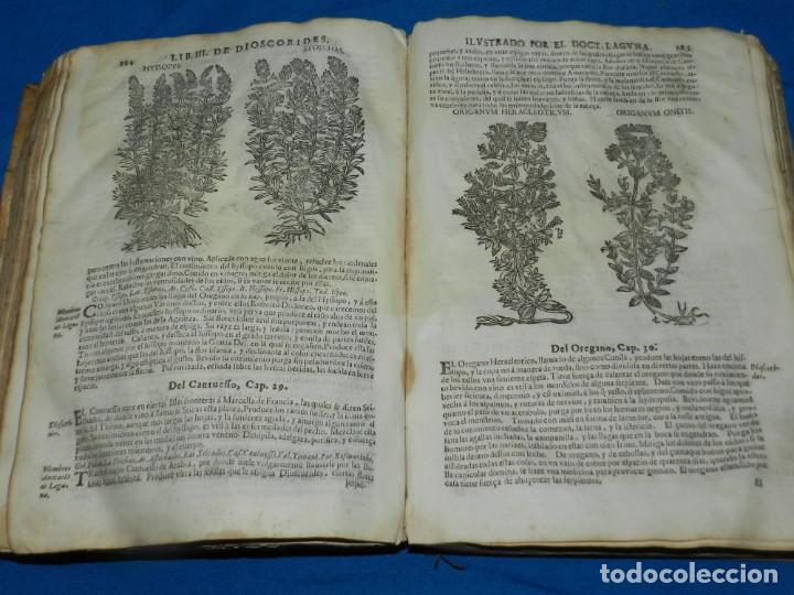 Libros antiguos: ANDRÉS DE LAGUNA - PEDACIO DIOSCORIDES ANAZARBEO ACERCA DE LA MATERIA MEDICINAL Y VENENOS MORTIFEROS - Foto 20 - 195486703