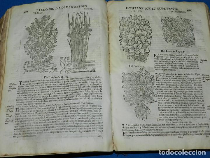 Libros antiguos: ANDRÉS DE LAGUNA - PEDACIO DIOSCORIDES ANAZARBEO ACERCA DE LA MATERIA MEDICINAL Y VENENOS MORTIFEROS - Foto 22 - 195486703