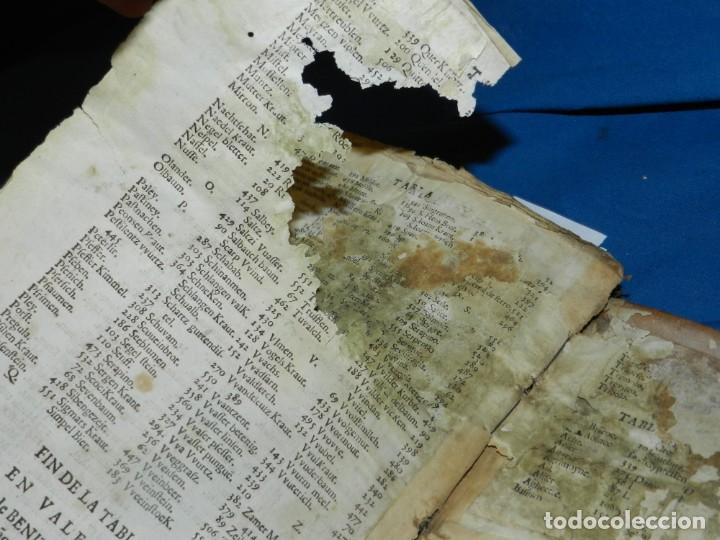 Libros antiguos: ANDRÉS DE LAGUNA - PEDACIO DIOSCORIDES ANAZARBEO ACERCA DE LA MATERIA MEDICINAL Y VENENOS MORTIFEROS - Foto 33 - 195486703