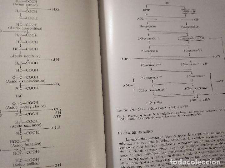 Libros antiguos: La Rehabilitación en Cardiología, Zohman -Tobis, 1ª Edición, Ediciones Toray, 1975 - Foto 8 - 195511342