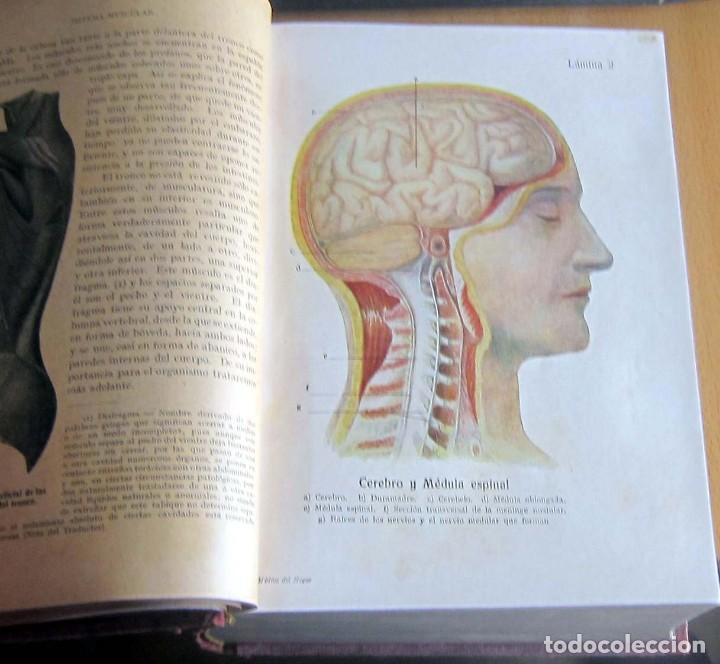 Libros antiguos: EL MEDICO DEL HOGAR,JENNY SPRINGER, DOCTORA EN MEDICINA,AÑO 1923, - Foto 10 - 196491720