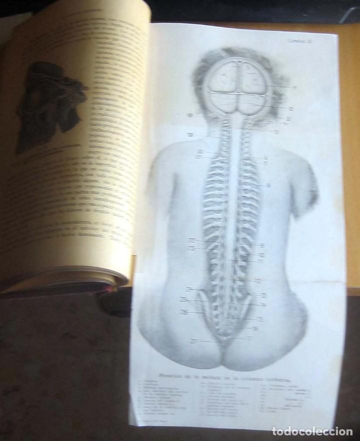 Libros antiguos: EL MEDICO DEL HOGAR,JENNY SPRINGER, DOCTORA EN MEDICINA,AÑO 1923, - Foto 11 - 196491720