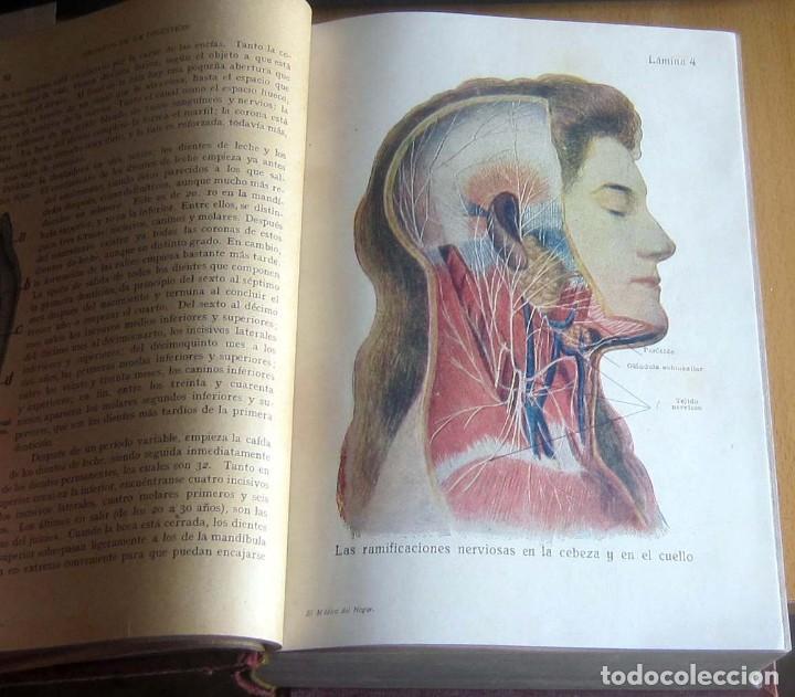 Libros antiguos: EL MEDICO DEL HOGAR,JENNY SPRINGER, DOCTORA EN MEDICINA,AÑO 1923, - Foto 12 - 196491720