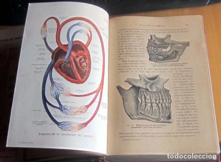 Libros antiguos: EL MEDICO DEL HOGAR,JENNY SPRINGER, DOCTORA EN MEDICINA,AÑO 1923, - Foto 13 - 196491720
