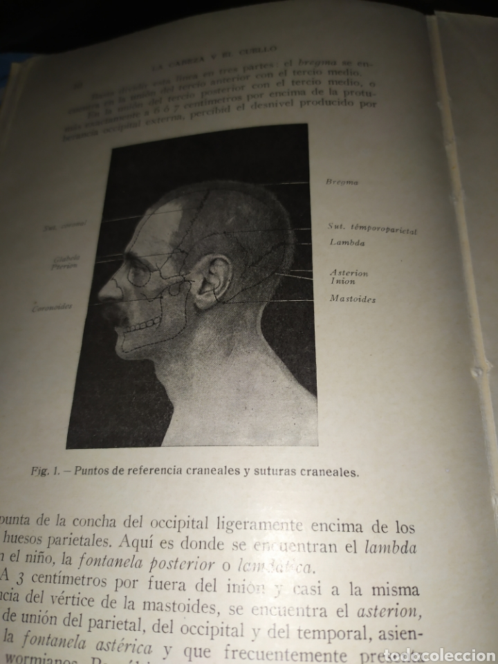 Libros antiguos: Anatomía bioscopica ,Dr aubaret 1923 - Foto 3 - 197530532