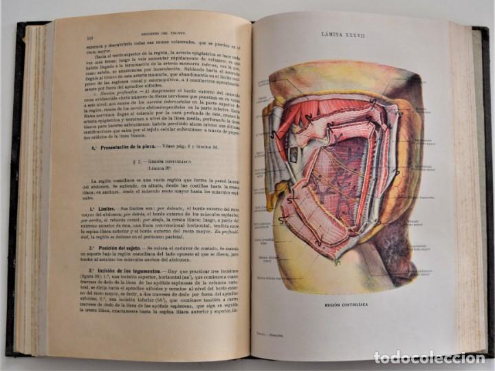 Libros antiguos: ATLAS DE DISECCIÓN POR REGIONES - TESTUT, JACOB Y BILLET - CASA EDITORIAL P. SALVAT 1921 - Foto 9 - 202398743