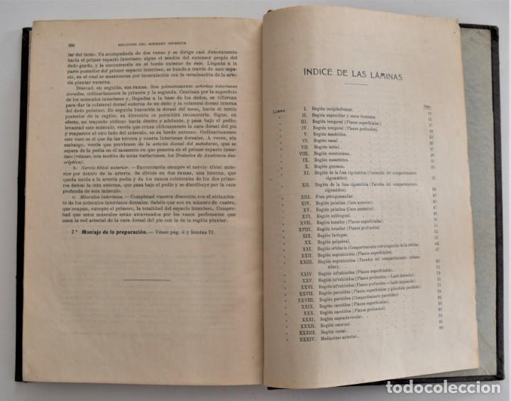 Libros antiguos: ATLAS DE DISECCIÓN POR REGIONES - TESTUT, JACOB Y BILLET - CASA EDITORIAL P. SALVAT 1921 - Foto 10 - 202398743