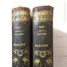 Libros antiguos: DR. J. A. FORT. ANATOMÍA DESCRIPTIVA Y DISECCIÓN. 2 TOMOS. O.C. MADRID, 1872.. Lote 206267827