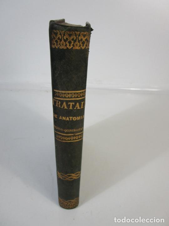 Libros antiguos: Tratado de Anatomía Topográfica Medico-Quirúrgica - J.E. Pétrequin - Madrid 1868 - Foto 2 - 208213227