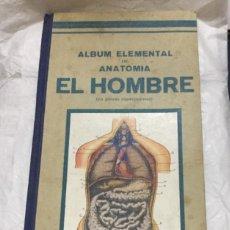 Libros antiguos: ALBUM ELEMENTAL DE ANATOMIA - EL HOMBRE - DALMAU CARLES, PLA EDITORES - BUEN ESTADO- 36X17CM. Lote 209241020