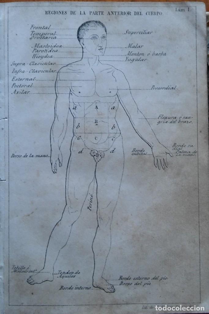 Libros antiguos: Instrucción del practicante. Madrid, 1863. 9 bonitas láminas litografiadas - Foto 3 - 211510994