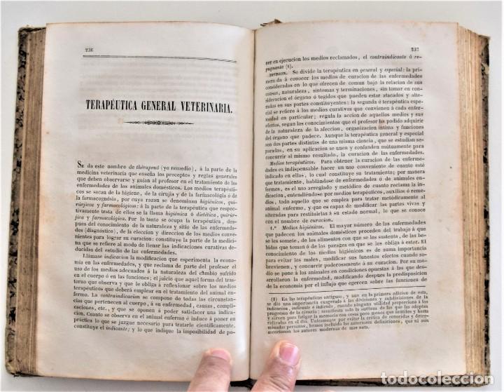 Libros antiguos: TRATADO ELEMENTAL MATERIA MÉDICA O FARMACOLOGÍA, TERAPÉUTICA VETERINARIA, JOSÉ MARÍA ESTARRONA 1850 - Foto 18 - 212300847