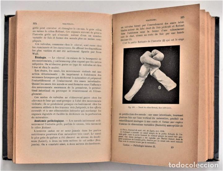 Libros antiguos: LOTE 4 TOMOS ENCICLOPEDIA CADÉAC DE VETERINARIA EDICIÓN FRANCESA AÑOS 1904 A 1914 - Foto 6 - 213962628