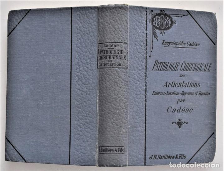 Libros antiguos: LOTE 4 TOMOS ENCICLOPEDIA CADÉAC DE VETERINARIA EDICIÓN FRANCESA AÑOS 1904 A 1914 - Foto 15 - 213962628