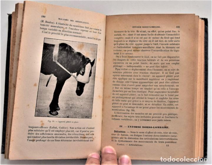 Libros antiguos: LOTE 4 TOMOS ENCICLOPEDIA CADÉAC DE VETERINARIA EDICIÓN FRANCESA AÑOS 1904 A 1914 - Foto 18 - 213962628