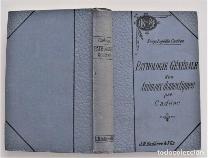 Libros antiguos: LOTE 4 TOMOS ENCICLOPEDIA CADÉAC DE VETERINARIA EDICIÓN FRANCESA AÑOS 1904 A 1914 - Foto 21 - 213962628