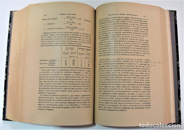 Libros antiguos: TRATADO ELEMENTAL DE HIGIENE COMPARADA DEL HOMBRE Y LOS ANIMALES DOMÉSTICOS, DÍAZ VILLAR 1911 Y 1915 - Foto 12 - 214990480