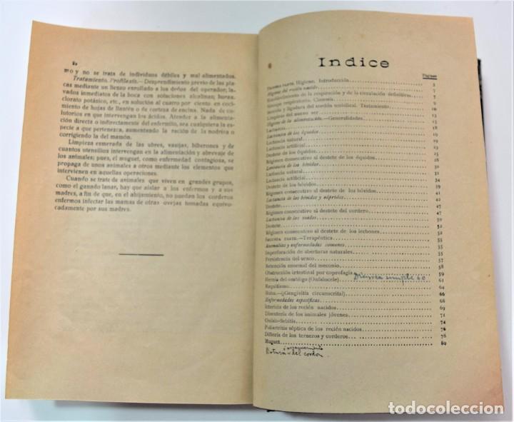 Libros antiguos: TRATADO ELEMENTAL DE HIGIENE COMPARADA DEL HOMBRE Y LOS ANIMALES DOMÉSTICOS, DÍAZ VILLAR 1911 Y 1915 - Foto 13 - 214990480