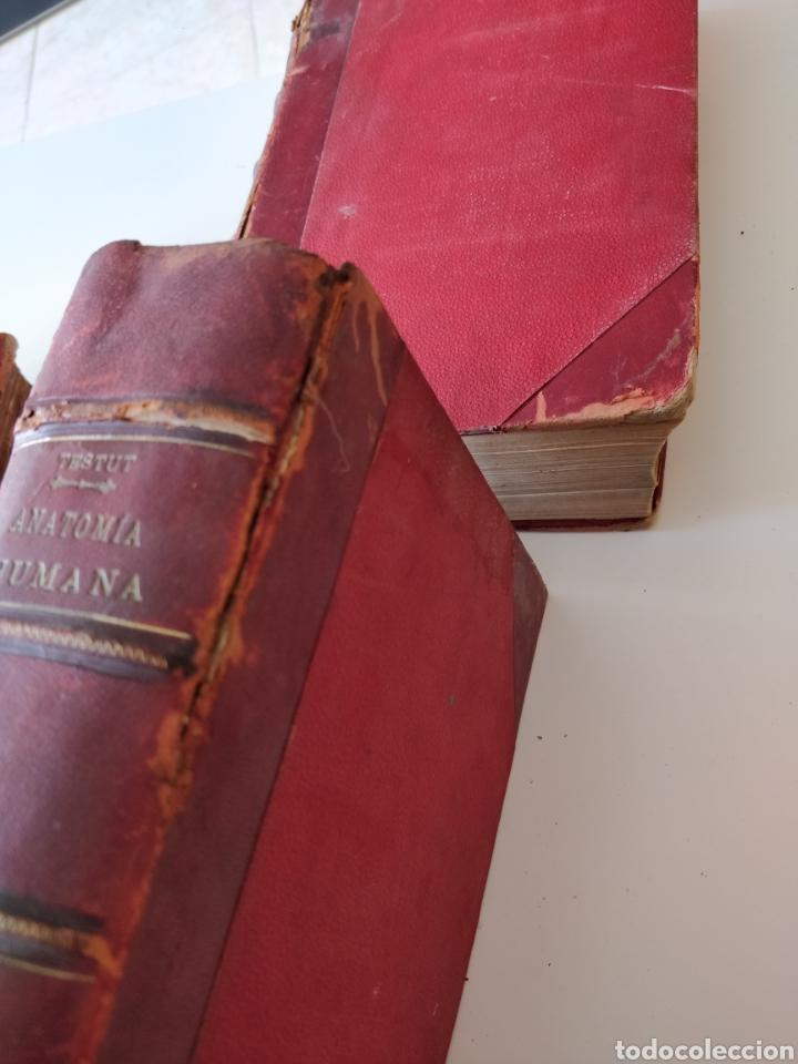 Libros antiguos: TESTUT-ANATOMÍA HUMANA 4 TOMOS. - Foto 3 - 216000706