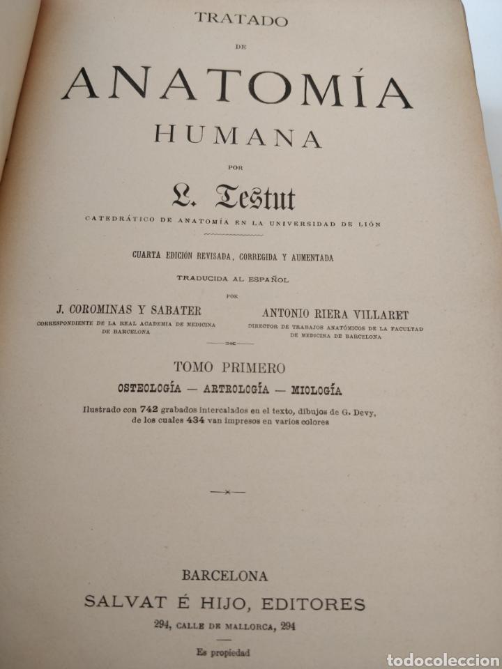 Libros antiguos: TESTUT-ANATOMÍA HUMANA 4 TOMOS. - Foto 4 - 216000706