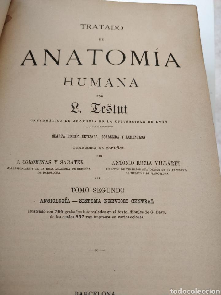 Libros antiguos: TESTUT-ANATOMÍA HUMANA 4 TOMOS. - Foto 5 - 216000706