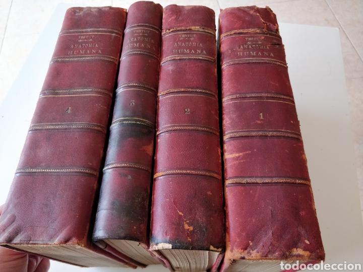 TESTUT-ANATOMÍA HUMANA 4 TOMOS. (Libros Antiguos, Raros y Curiosos - Ciencias, Manuales y Oficios - Medicina, Farmacia y Salud)