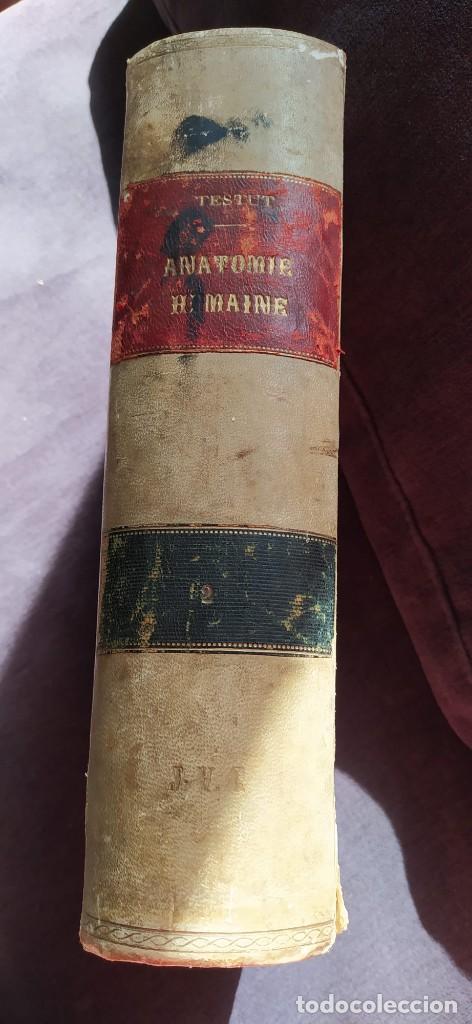 Libros antiguos: Medicina. Libro de Anatomía Humana. Traité dAnatomie Humaine. Vol 2. 1897. Autor: L. Testut. - Foto 4 - 218399151