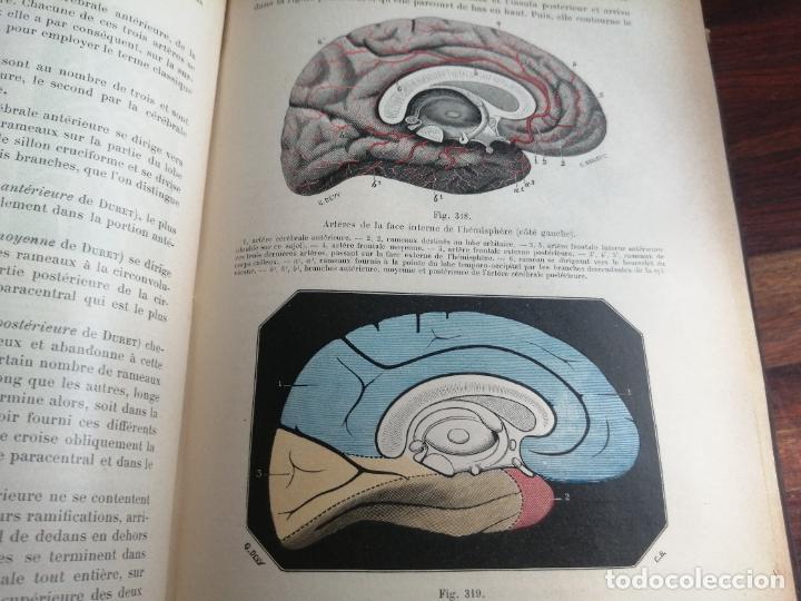 Libros antiguos: Medicina. Libro de Anatomía Humana. Traité dAnatomie Humaine. Vol 2. 1897. Autor: L. Testut. - Foto 5 - 218399151