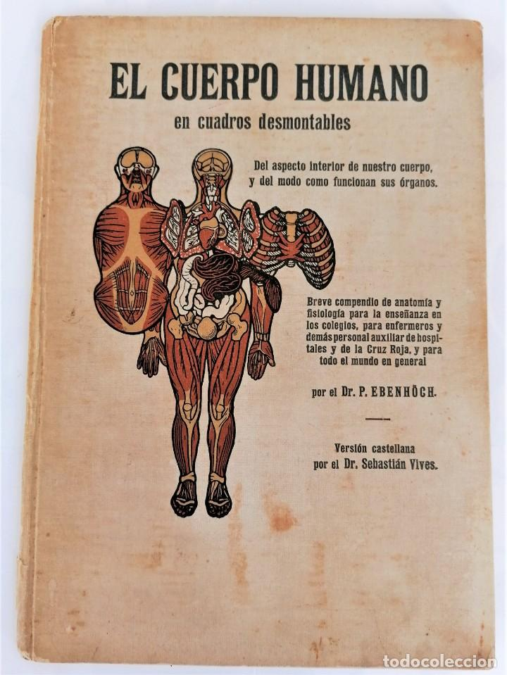 Libros antiguos: LIBRO,EL CUERPO HUMANO,AÑO 1921 CON DESPLEGABLES DE ANATOMIA,MEDICINA Y FARMACIA,ORGANOS/MUSCULOS - Foto 2 - 218514162