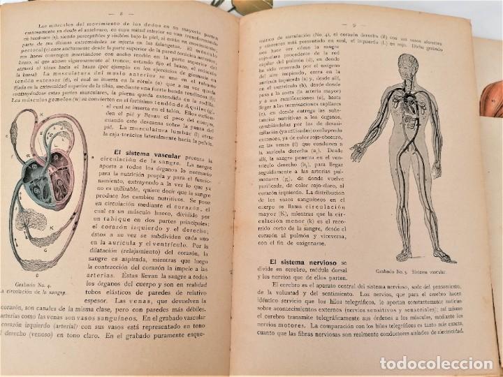 Libros antiguos: LIBRO,EL CUERPO HUMANO,AÑO 1921 CON DESPLEGABLES DE ANATOMIA,MEDICINA Y FARMACIA,ORGANOS/MUSCULOS - Foto 6 - 218514162