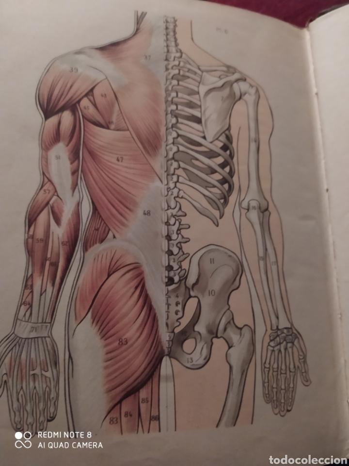 Libros antiguos: LAROUSSE MEDICAL ILLUSTRE. 1924/1925 - Foto 14 - 219864833