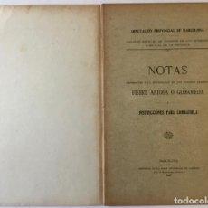 Libros antiguos: NOTAS REFERENTES Á LA ENFERMEDAD DE LOS GANADOS LLAMADA FIEBRE AFTOSA Ó GLOSOPEDA É INSTRUCCIONES.... Lote 228410730